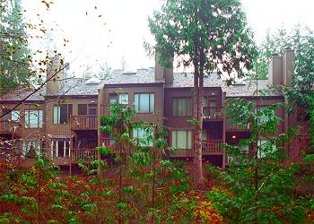 Mt. Baker Lodging - Condo #18