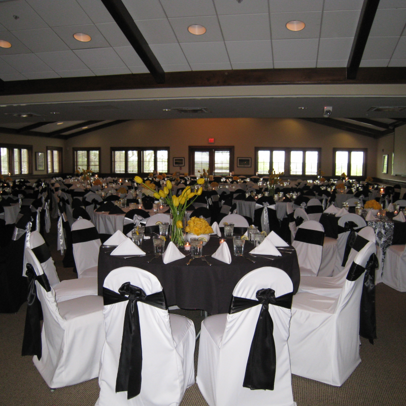 Chair Cover Elegance