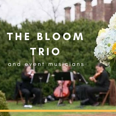 The Bloom Trio and Event Musicians